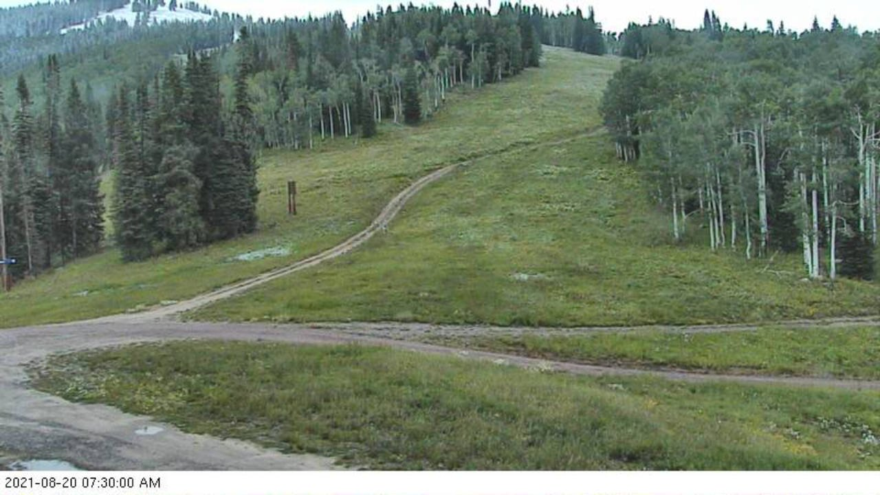 First snow from Rendezvous on 20 August 2021