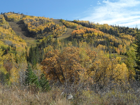Lower mountain from tenderfoot 8 Oct 2014